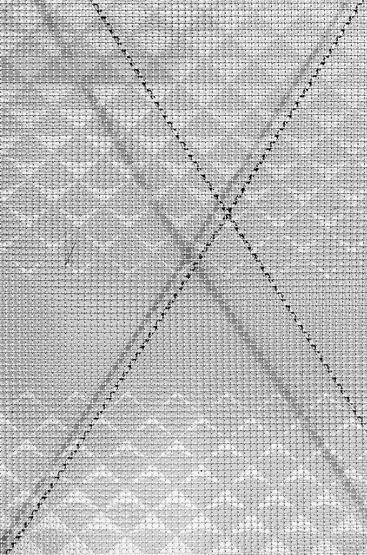 Bogotá  (2020, 75×50 cm, plexiglass)
